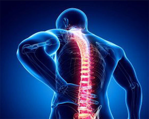 Prevent Back Pain Saanich Physiotherapy Sports Clinic